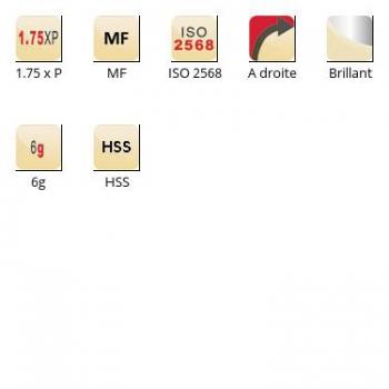 esq-F110_dim_fr